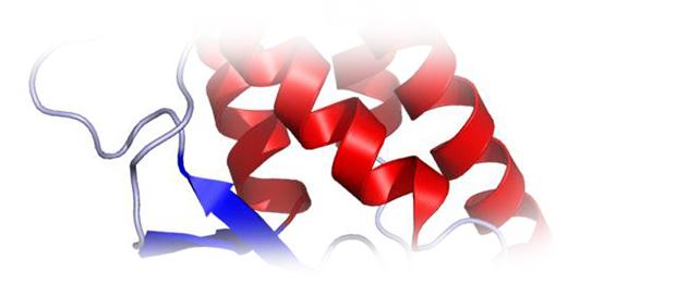 лечении атопического дерматита, биологический препарат, зарегистрированный в РФ ингибитор интерлейкина
