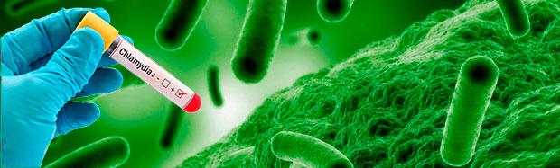 Быстро и анонимно сдать анализы на хламидиоз в клинике ИВ Мещериной ☎ +7 (495) 506 15 69